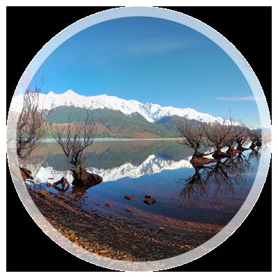 Panedia Experience New Zealand